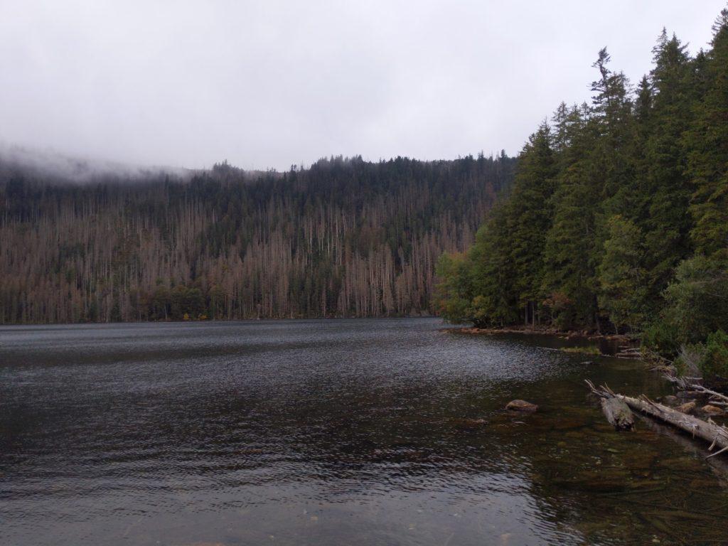 Fotka Černého jezera